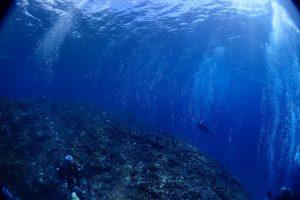 ソーダ海2